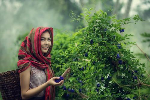Beautiful Asian woman farmer in flower farm. holding butterfly p