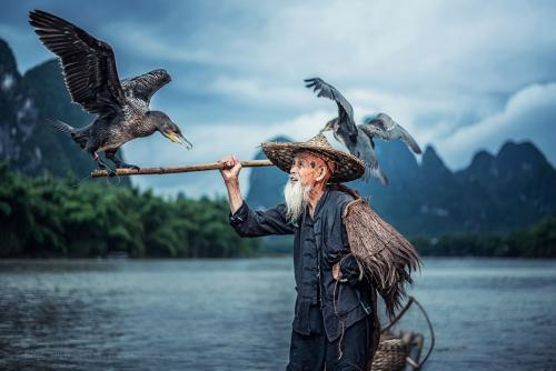Cormorant fisherman Guangxi province, China.
