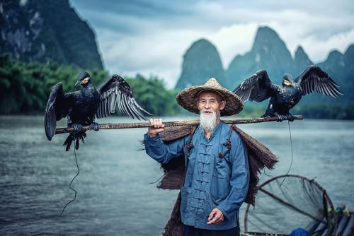 Cormorant fisherman in Traditional showing of his birds on Li ri